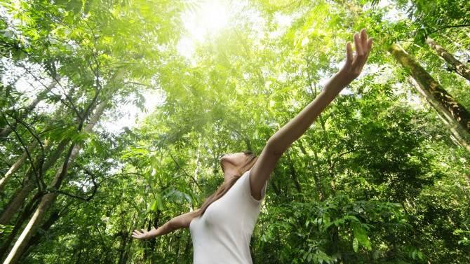 Photo of Yeşil Bir Alanda Yetişmek Ruh Sağlığını Desteklemeye Yardımcı Olur